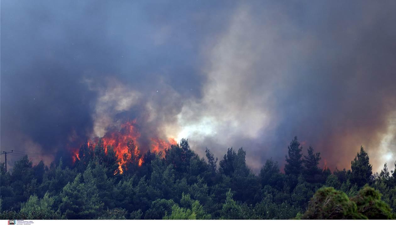 Φωτιά στη Μαρουλού Ρεθύμνου: Μεγάλη κινητοποίηση από πυροσβεστική