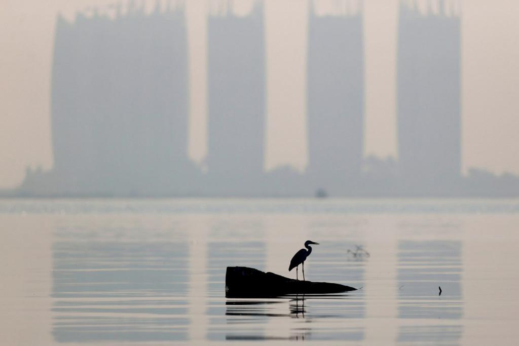 Ο ΟΗΕ αναγνωρίζει το καθαρό περιβάλλον ως ανθρώπινο δικαίωμα